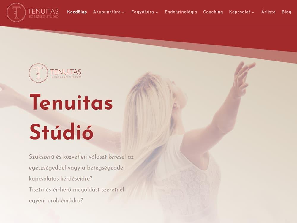 Tenuitas Stúdió